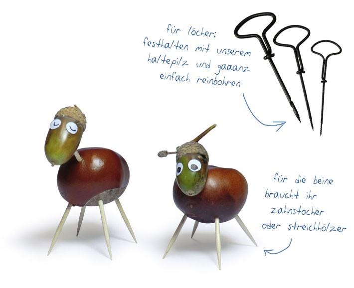 kastanienbohrer - 3 stück