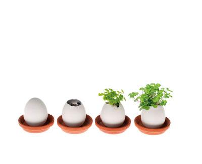 zauberei - eggling aus japan