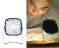 little diamond - Bild1